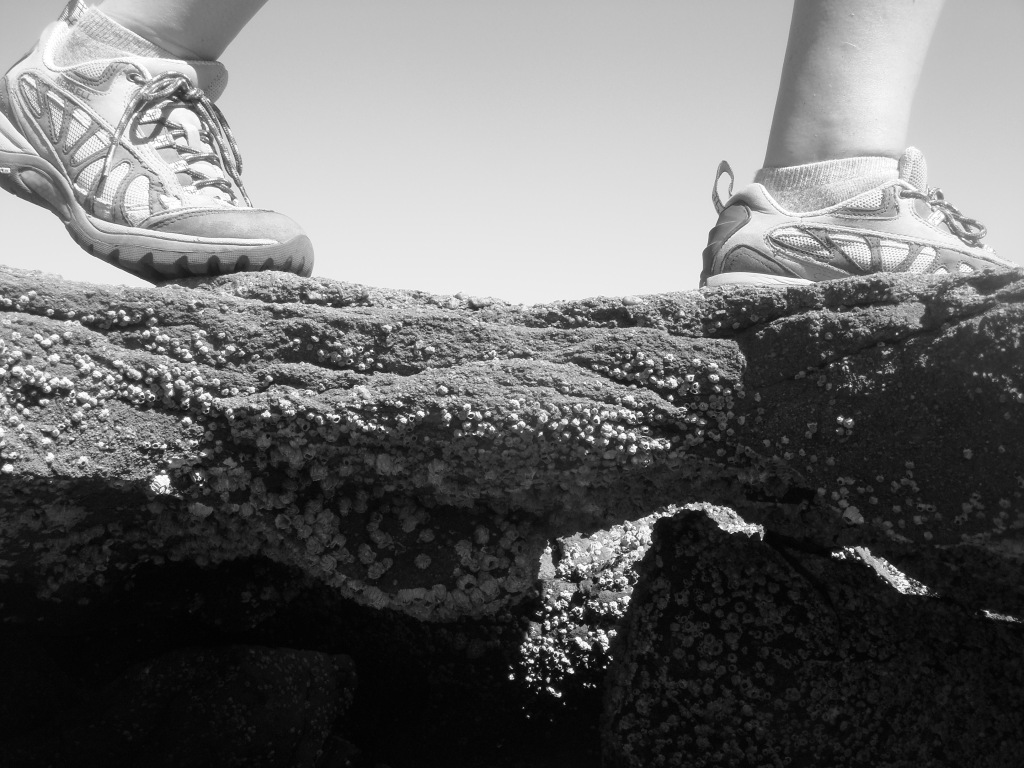 Feet on barnacle-covered rock, taking a step in the right direction