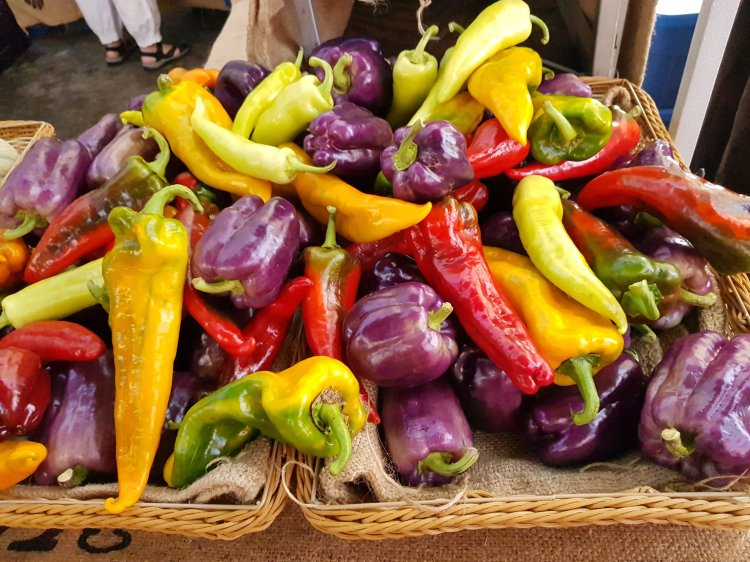Yellow, red, purple, and green peppers piled up at a farmer's market